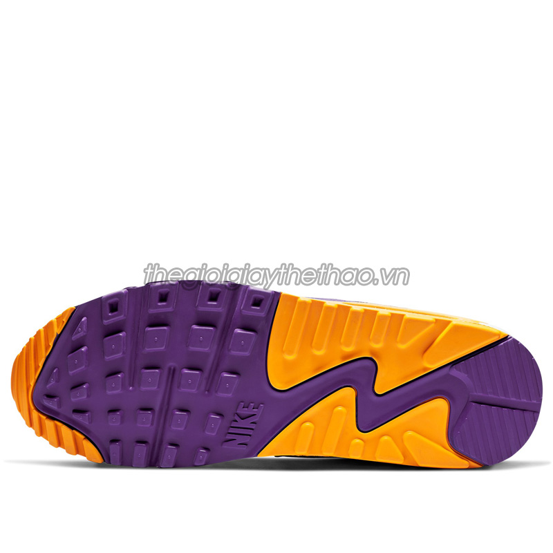Giày Nike Air Max 90 Viotech CD0917-600  3